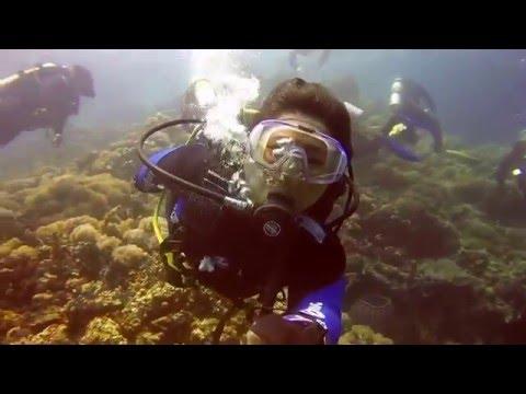 Diving Adventures In Puerto Galera
