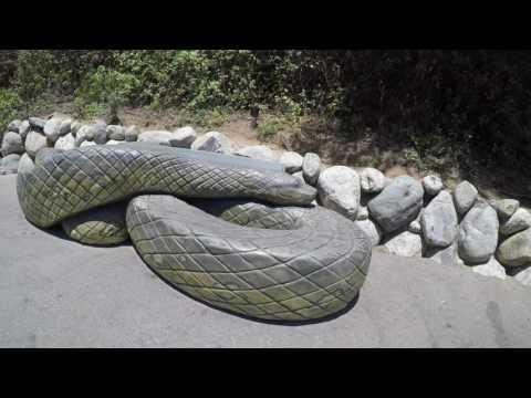 los Angeles zoo, zoologico de los Angeles