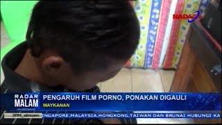 Paman Gauli Keponakan Sendiri Karena Terpengaruh Film Porno