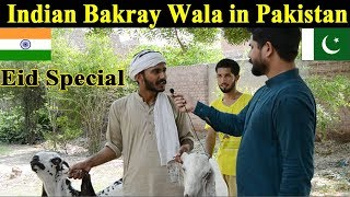 Indian Bakray Wala in Pakistan | Funny Bakra Eid Special Video | Eid Ul Azha Mubarak