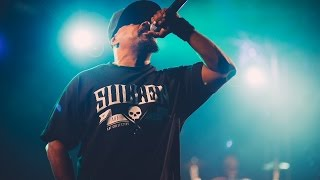 vuclip Nass Festival 2014: Cypress Hill & Extreme sports