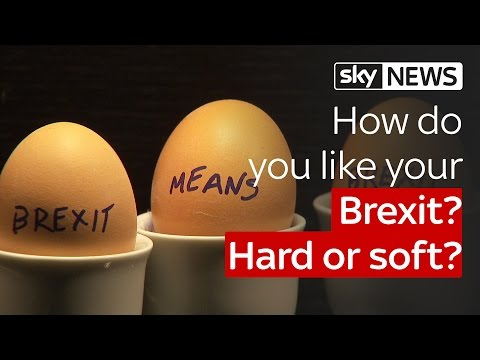 How do you like your Brexit? Hard or soft?