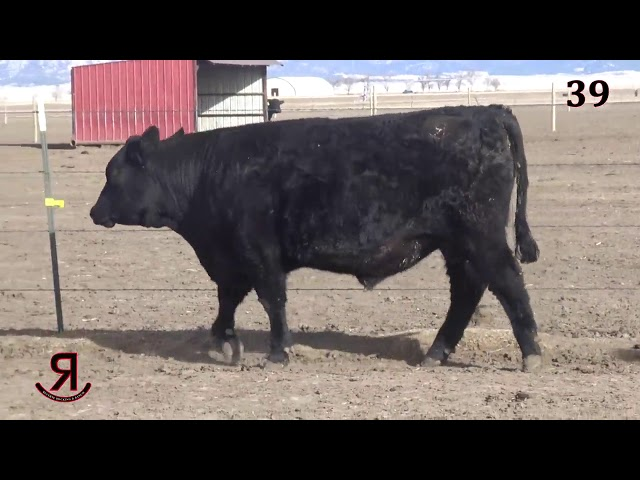 Reverse Rocking R Ranch Lot 39