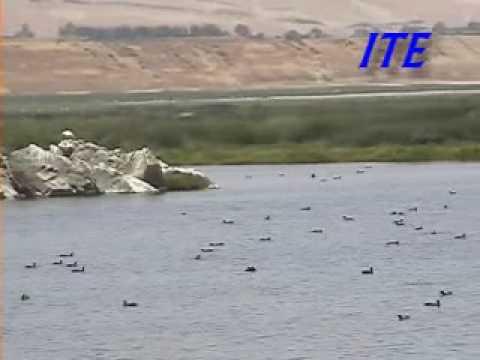 Distrito de Ite - Tacna - Perú