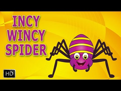 Incy Wincy Spider Nursery Rhyme with Lyrics - Cartoon Animation Rhymes - Itsy Bitsy Spider