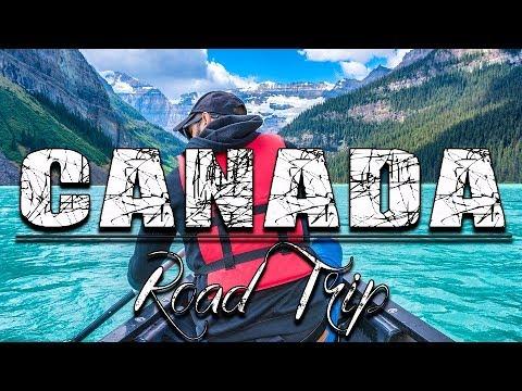 Viaggio in Canada - Attenti all'Orso