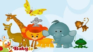 Wild Animal Sounds and Names for Kids & Toddlers | BabyTV