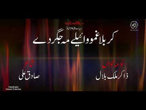 PASHTO NOHAY 2019-20 | Karbala Ghamo Wayaly Ma Jigar De | ZAKIR MALIK BILAL Pashto Matam