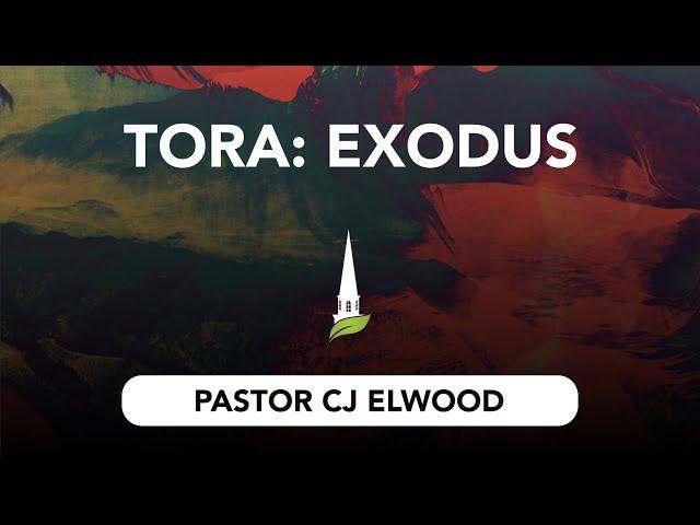 Torah - Exodus
