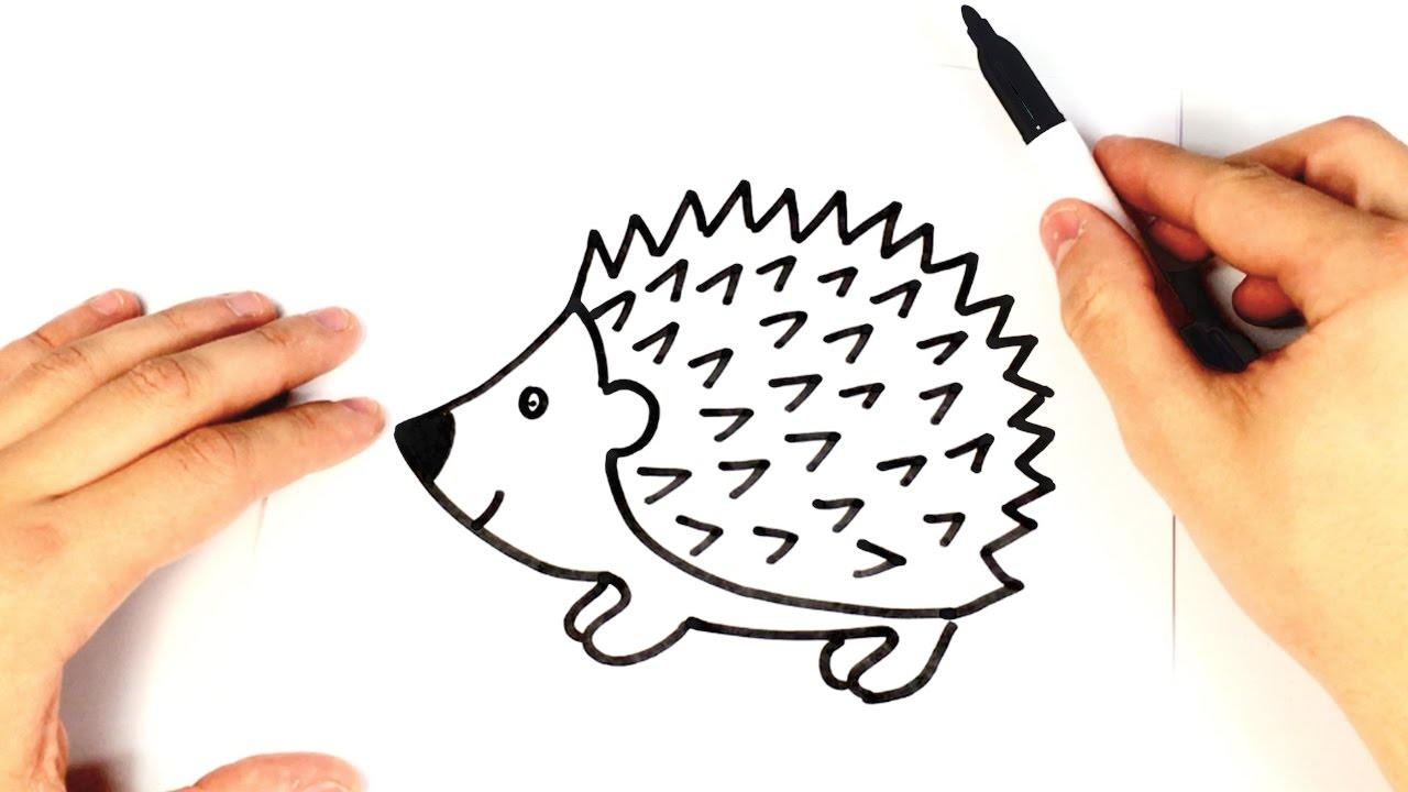 How To Draw A Hedgehog For Kids Hedgehog Drawing Lesson Youtube