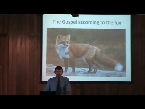 Richard de Klerk  The Gospel According to the Fox