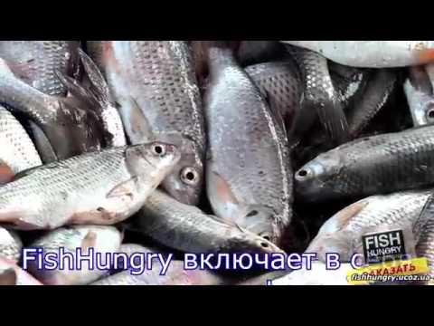 Активатор клёва «Fish Hungry» голодная рыба   fishhungry ucoz ua