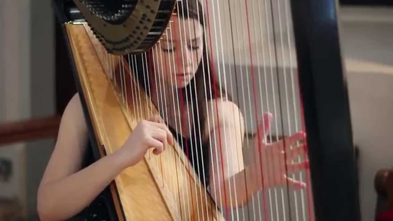 Download J.S. Bach - Toccata and Fugue in D Minor BWV 565 // Amy Turk, Harp