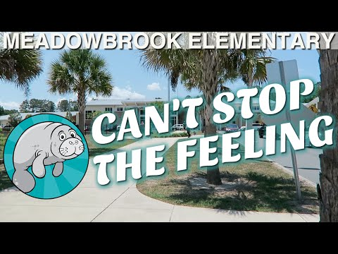 """Can't Stop The Feeling"" - Meadowbrook Elementary Edition"