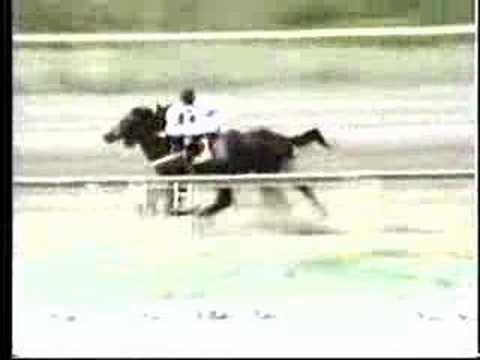 Clasico Jose Antonio Paez 1989