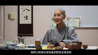 心安影展微電影-花藝職人釋日華法師