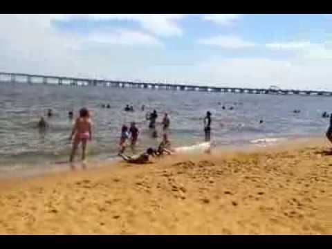 Sandy Point State Park Beach Maryland USA YouTube - Marriland state