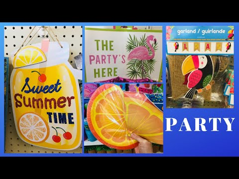 Dollar Tree Summer Party BBQ Picnic Supplies & Decorations