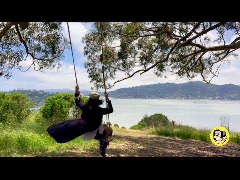 Hidden Panoramic Rope Swings in San Francisco That Are Instagram-Worthy
