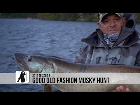 Good Old Fashion Musky Hunt At Treeland Resorts - Episode 6