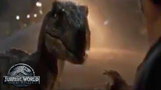 New TV Spot - The Future of Owen & Blue After Fallen Kingdom   Jurassic World 2