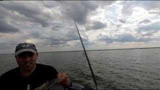 Рыбалка на маныче Ловля сома на квок Бешеный окунь
