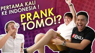 AKHIRNYA TOMO KE INDONESIA!