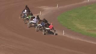 Vidéo de la course PMU PRIX DES VENTES DU MARAULT