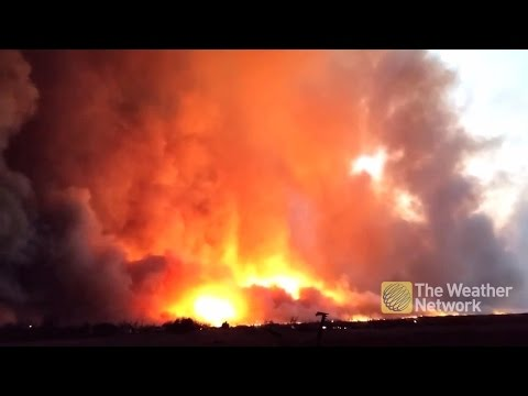 MASSIVE grass fires burn through Texas panhandle