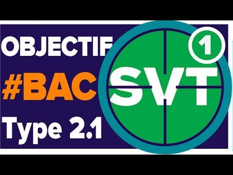 Domaine Continental et Système Nerveux - Bac S SVT - Type 2.1 - Mathrix