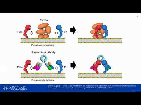 Chromogenic Factor VIII And IX Assays: Impact On Diagnosis And Management Of Hemophilia