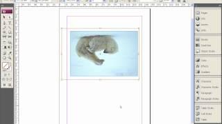 Импорт изображений и помещение их во фреймы в Adobe InDesign