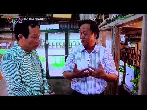 Trang trại Thanh Xuân nuôi Dế, Tắc kè VTV2 phát sóng, Bạn nhà nông 2015, phần I