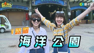 《溫妮泱泱VLOG》第一集 海洋公園篇 Muyao4 Vlog: HK oceanpark thumbnail