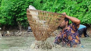 Best Traditional Fishing Video Real Fish Hunting Video