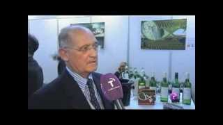 World Bulk Wine Exhibition 2013