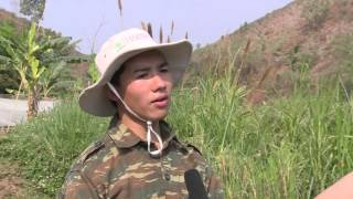 Agroforestry for livelihoods of smallholder farmers in north-western Vietnam