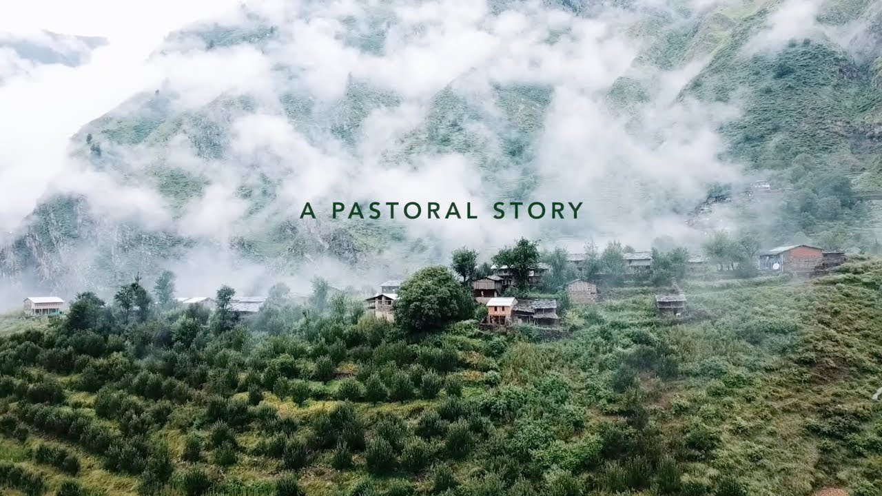 A Pastoral Story
