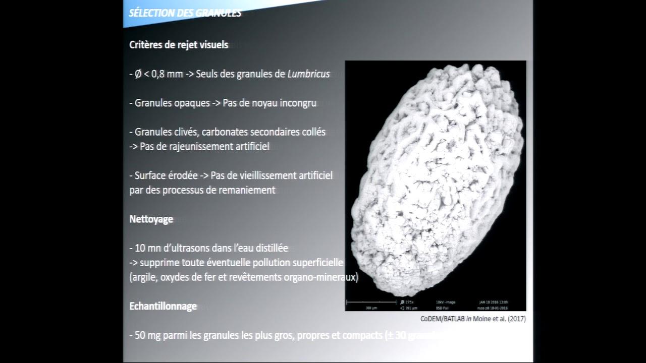 photo de datation de radiocarbone