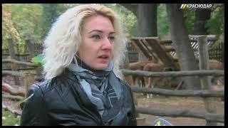 Краснодарский сафари-парк организовал уроки зоологии для школьников