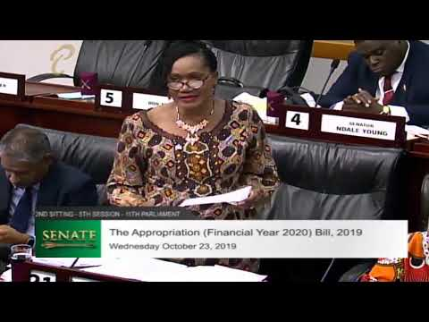 Labour Minister's Budget Contribution - 2nd Sitting of the Senate, 5th Session - October 23, 2019