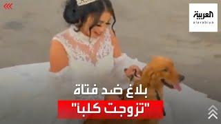 """بلاغ للنائب العام ضد هبة مبروك لـ""""زواجها"""" من كلب"""
