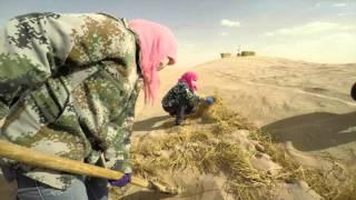 """""""Planète sable : quand le désert avance"""", une série documentaire à ne (surtout) pas rater sur Arte"""