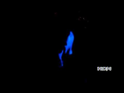 Dugem Lantai 7 Taichung