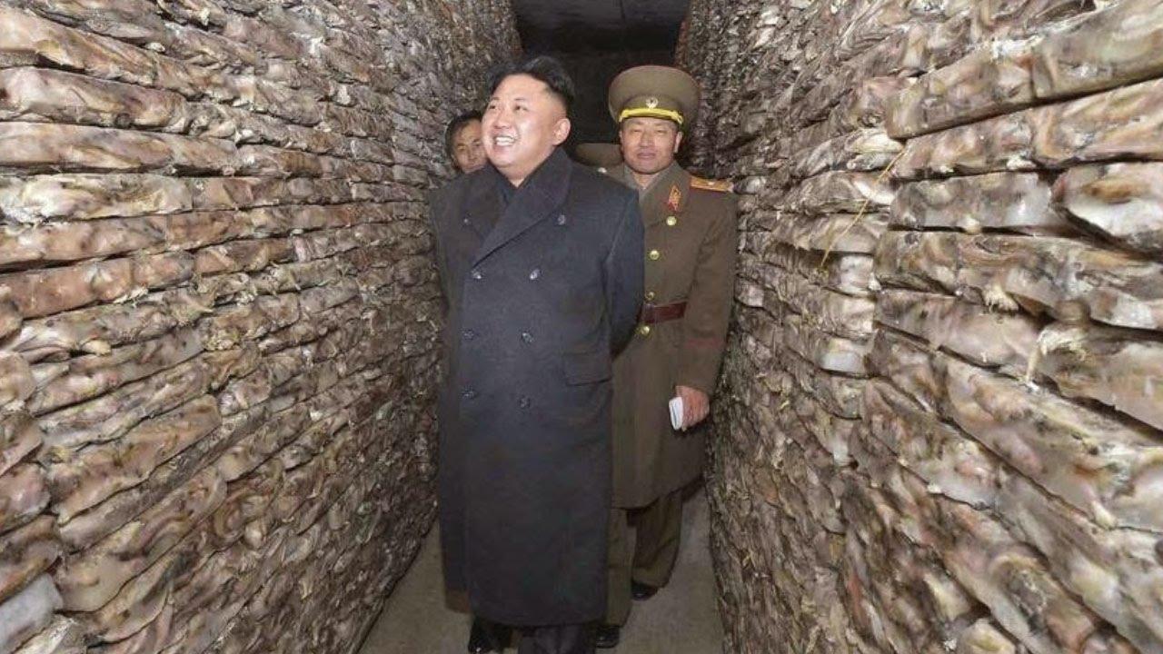 Image result for Room-39, North Korea