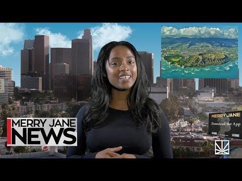 NYC Bans CBD Drinks & Edibles | HI & NM Move Towards Legalization | MJ NEWS Mp3