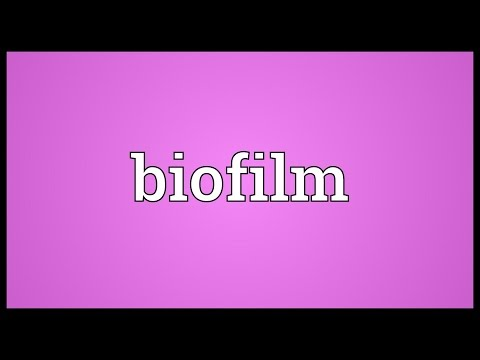 Biofilm Meaning