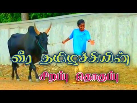 Palamedu jallikattu live (16.01.2020)из YouTube · Длительность: 31 мин18 с