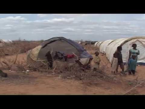 Update on the Dadaab refugee camp refugee camp closure