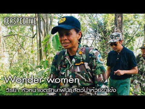 Perspective : วีรยา ผู้พิทักษ์พันธุ์สัตว์ป่าห้วยขาแข้ง | Wonder women [28 พ.ค. 60] Full HD